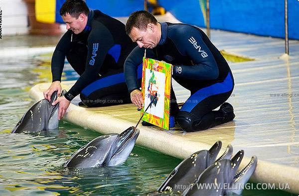 вакансии тренера дельфинарий крым доверия, Центр психолого-педагогической